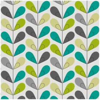 scandy vert