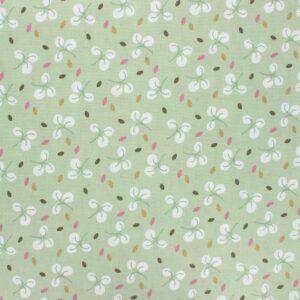 coton bulhup vert